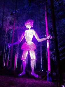light show at the enchanted forest